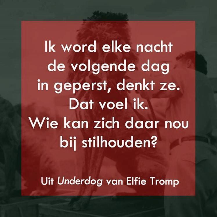Elfie Tromp - Underdog
